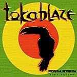 Toko Blaze Negra Musica