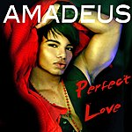 Amadeus Perfect Love (Single)
