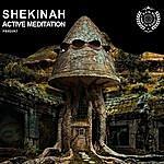 Shekinah Active Meditation
