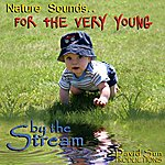 David Sun By The Stream (Nature Sounds For The Very Young)