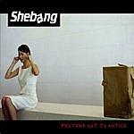 Shebang Pretend Not To Notice
