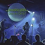 Spoonfed Tribe Live In Dfw