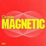 Cicada Magnetic (2-Track Single)
