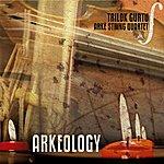 Trilok Gurtu Arkeology