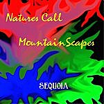 Sequoia Natures Call / Mountainscapes