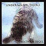 Jonathan Segel Underwater Tigers