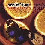 Seeds Of Sun Seeds Of Sun