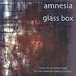 Jonathan Segel Amnesia Glass Box