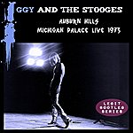 Iggy Pop Auburn Hills: Michigan Palace Live 1973