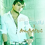 Amadeus You Are So Beautiful (Single)
