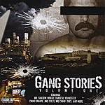 Swat Records Presents Gang Stories (Parental Advisory)