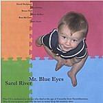 Sarel River Mr. Blue Eyes
