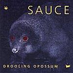 Sauce Drooling Opossum