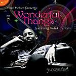 Elliot Holden Wonderful Thangs - Single