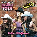 Hillbilly Soul New Country Greats - Pickin' Wildflowers