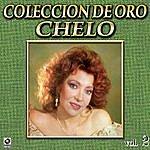 Chelo Chelo Coleccion De Oro, Vol. 2 - Tu Partida