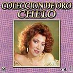 Chelo Chelo Coleccion De Oro, Vol. 1 - Tu Y La Mentira