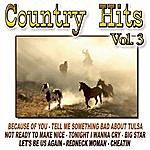 Cowboy Country Hits Vol.3
