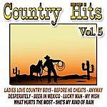 Cowboy Country Hits Vol.5