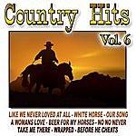 Cowboy Country Hits Vol.6