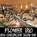 Flower Boa Constrictor Sushi Bar
