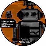 Flip Sensei (4-Track Maxi-Single)