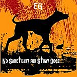 E.G No Sanctuary For Stray Dogs
