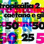 Gilberto Gil Caetano E Gil - Tropicalia 2