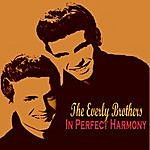 The Everly Brothers In Perfect Harmony