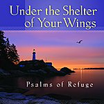 Mark Baldwin Under The Shelter Of Your Wings Psalms Of Refuge