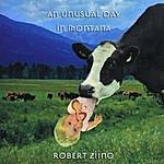 Robert Ziino An Unusual Day In Montana