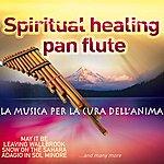 Tarahumara Spiritual Healing Pan Flute