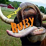 The Wurzels Ruby