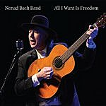 Nenad Bach All I Want Is Freedom