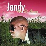 Jandy Feliz Por Si Acaso (Single)