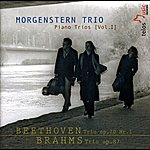 Morgenstern Morgenstern Trio: Piano Trios Vol. 1