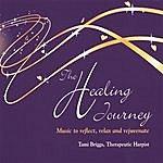 Tami Briggs The Healing Journey