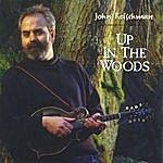 John Reischman Up In The Woods