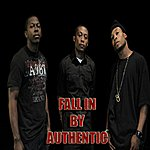 Authentic Fall In By Authentic
