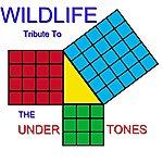 Wild Life Tribute To The Undertones