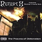 The Rebirth The Process Of Obliteration