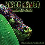 Black Mamba Mortal Poison