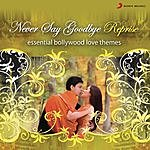 Shankar-Ehsaan-Loy Never Say Good Bye - Reprise