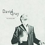 David Gray Foundling - Deluxe Edition