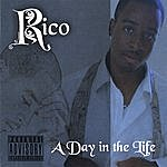 Rico A Day In The Life....