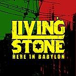 Livingstone Here In Babylon