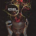 Primm All In Yo Head