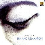 Pravin Mani Music For Spa And Relaxation