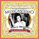 Amalia Mendoza Mexicanisimo-Bicentenario / Amalia Mendoza
