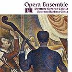 The Opera Opera Ensemble